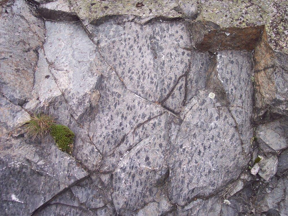 feinkörniges dichtes gestein